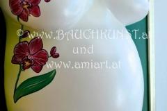 Orchideen Grün